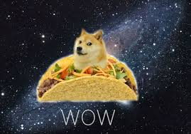 Doge Wow Meme - wow what is happening to doge wow doge is flying with taco such