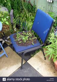 Types Of Urban Gardening Blue Office Type Chair With Green Plants Growing Out Of The Seat