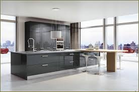 Modern Kitchen Cabinets Chicago 91 Beautiful Nifty Kitchen Cabinet Manufacturers Of Outstanding