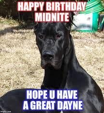Great Dane Meme - great dayne imgflip