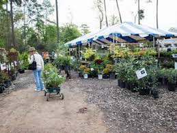 Season Botanic Gardens Mercer Botanic Gardens Announces March Plant Sale Humble Tx Patch