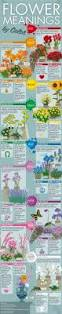 flower meanings by color feng shui color infographics the tao