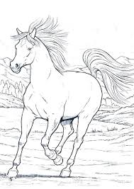 real pony coloring pages horse coloring pages number one realisti on horse and pony coloring