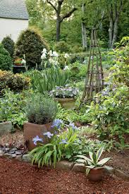 small trees in small gardens about the garden magazine cottage garden design southern living
