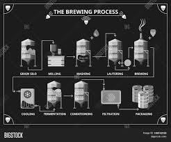 beer vector beer brewing process vector beer vector u0026 photo bigstock
