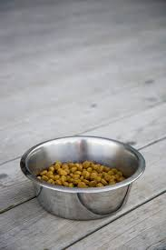 what kinds of food are in a low residue diet for dogs dog care