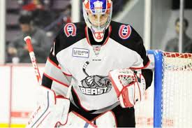 whether it u0027s zachary fucale or michael mcniven who gets the echl