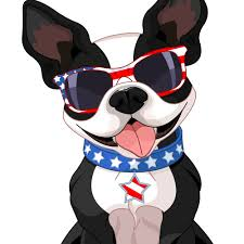 boston terrier art sally the nightmare before by rubenacker pets