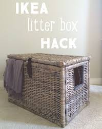 How To Keep Cats Off Outdoor Furniture by Best 25 Cat Litter Boxes Ideas On Pinterest Hidden Litter Boxes