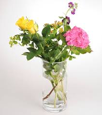 How Much Is A Dozen Roses Keep Flowers Fresh By Treating Them To Vodka Bleach Lemonade Or