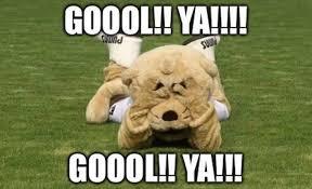 Memes America Pumas - los memes humillan a pumas al perder la final vs tigres tiempo