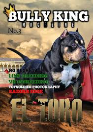 american pit bull terrier history history of the american pit bull terrier u0026 the evolution of the