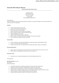 Aaaaeroincus Surprising Web Designer Resume Format Sample     aaa aero inc us