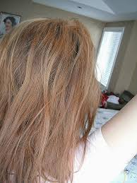 less damaging hair colors red hair ash brown hair color over red beautiful safest way to