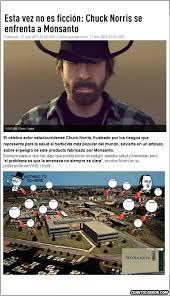 Memes De Chuck Norris - cuánto cabrón lo que no consiguió greenpeace lo conseguirá chuck