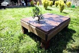 Coffee Tables Made From Trees Coffee Tables Made From Tree Trunks Wooden Coffee Table Tree Trunk