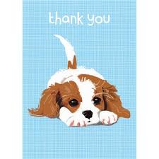 tails stationery cavalier king charles spaniel mini note cards