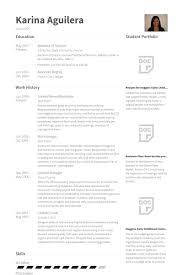 resume exle for server bartender server trainer resume sales trainer lewesmr