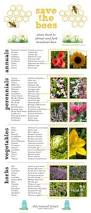 a handy list of plants that attract pollinators butterflies