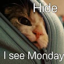 Funny Monday Meme - 60 funny monday quotes to make you feel awesome