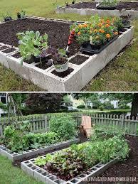 29 best garden images on pinterest gardening plants and garden tips