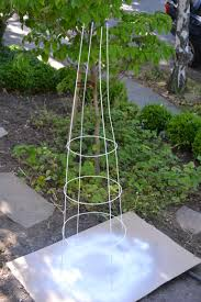 add color to your garden u2014 painting tomato cages fox and hammer