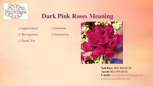 Meaning Of Pink Roses Flowers - june u2013 national rose month