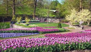 List Of Botanical Gardens Longwood Gardens Named Best Botanical Garden By Usa Today And 10best