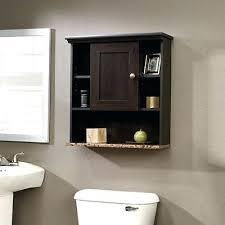bathroom cabinet with toilet paper holder over ladder shelf