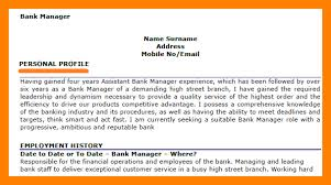 example of personal profile on resume financial cv template