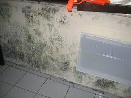 probleme moisissure chambre moisissure chambre sante fiche illustration hb moisplaf chambre
