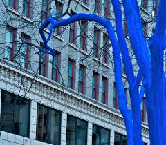 seattle s surreal blue trees