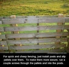 How To Design A Backyard Landscape Plan Best 25 Chicken Runs Ideas On Pinterest Chicken Pen Chicken