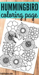 bird coloring page for grown ups trail of colors