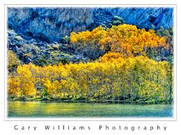 june lake gary williams photography