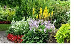 Summer Garden Ideas - garden ideas for beginners creating the perfect patch