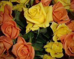 fond d ran de bureau des fleurs pour le bureau de votre ordinateur fleurs fonds d