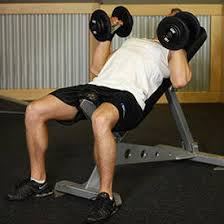 Bench Exercises With Dumbbells Incline Dumbbell Bench With Palms Facing In Exercise Videos