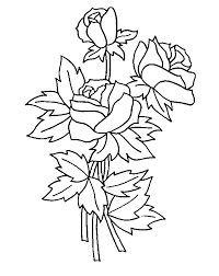 printable coloring pages roses coloring home