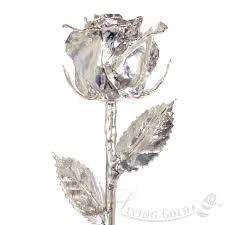 silver roses real dipped in silver by living gold venus
