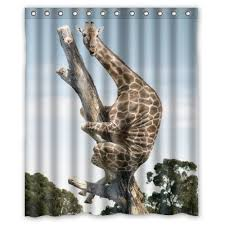 Animal Shower Curtain 61 Best Funny Funky Shower Curtains With Exclusive Look Images On