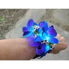 blue orchid corsage blue orchid corsage shearers florist hanover pa