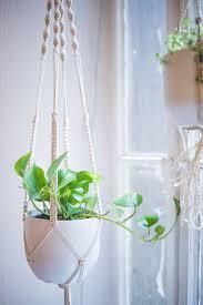 in door plant put in pot vide easy home diy macrame plant hanger tutorial macrame plant
