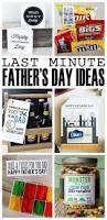 100 fathers day gifts ideas father u0027s day gift ideas