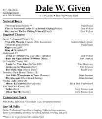 Best Resume Overview by Profile Resume Section Sample Resume For Attorney Trial Attorney