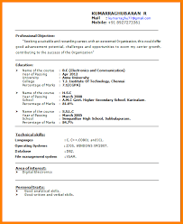 Best Resume Sample by Best It Resume Examples