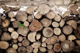Brennholz Lagern Ideen Wohnzimmer Garten Richtig Lagern Und Trocknen