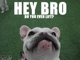 Do You Even Lift Bro Meme - 25 funny do you even lifts smosh