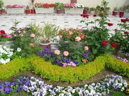 large size serene low budget regarding small front yard landscapes small garden front ideas and arrangments