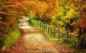 besplatne pozadine jesen
